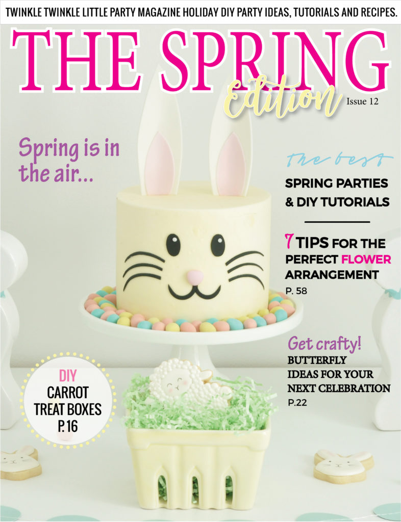 Find the best party ideas, DIY tutorials and easy recipes in this newest issue of Twinkle Twinkle Little Party Magazine! Andressa Hara, lifestyle/party blogger is the creative director behind this fun online party magazine!